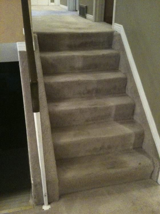 Carpet Stairs- Before